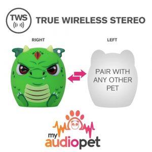 dragon My Audio Pet
