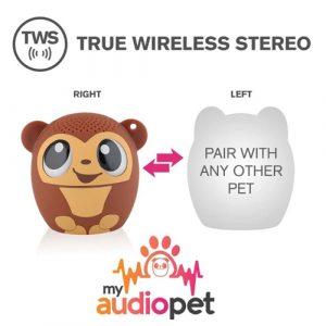 monkey My Audio Pet