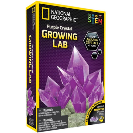 Purple Crystal Growing Lab STEM Kit